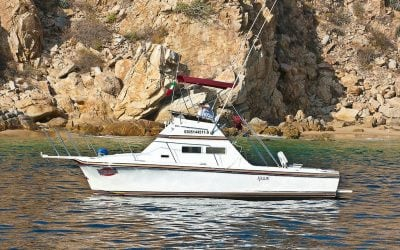 28ft californian sport fisher by redrum sport fishing los cabos reelrum
