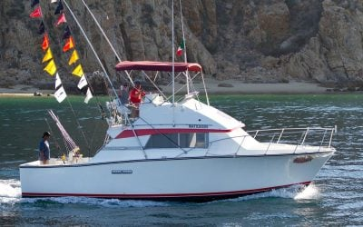 33ft Bertram sport fisher run by redrum sport fishing in los cabos